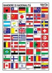 World Nations Naval ensigns sticker 16x24cm #N31812621812