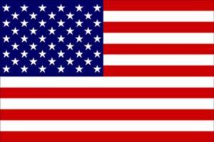 Bandiera USA 30X45cm #N30112503717