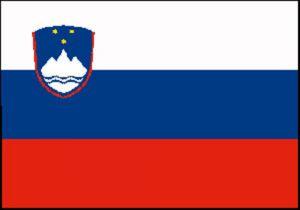 Flag of Slovenia 20X30cm #N30112503692