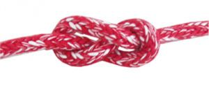 Lightdy Very High Tenacity Braid Ø 8/9mm 100mt spool Red #FNI0804708R