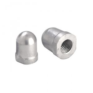 RENAULT MARINE ∅ 40x48 mm Axis 40 mm Nut Zinc Anode #OS4310002